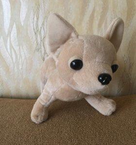 Игрушка собачка чихуахуа