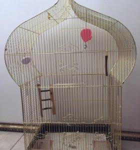 Золотая клетка для попугая
