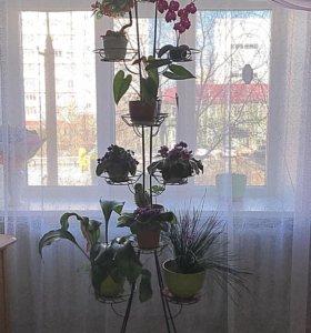 Кованая подставка под цветы