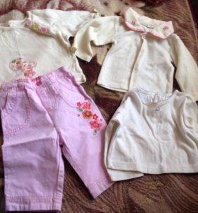Одежда. Кофты и штанишки