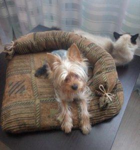 Лежанка для собачки или кошки