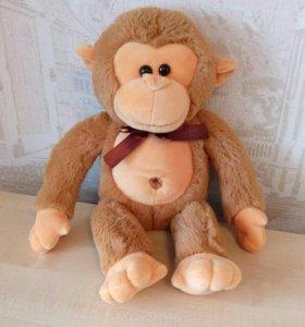 Поющая обезьяна