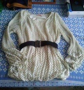 Брюки zolla , и блузка