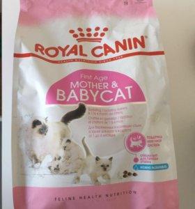 Сухой корм для котят Royal Canin Mother Babicat