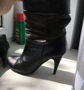 Обувь женская, сапожки, кожаная обувь