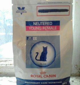ROYAL CANIN для кастрир кош