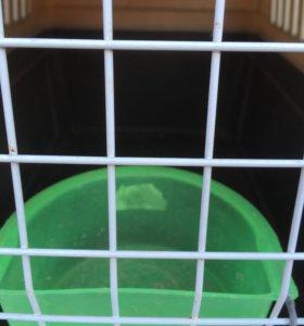 Клетка-переноска для маленьких животных