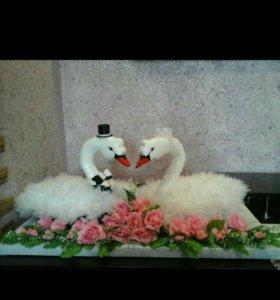 Лебеди на свадьбу,никах