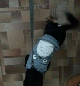 Кофточка(тоторо) для собачки