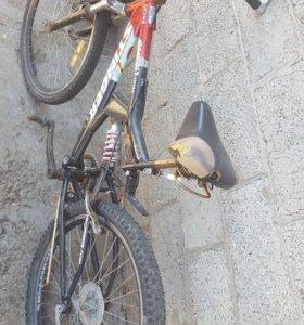 Велосы
