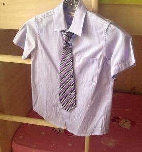 Рубашка+галстук