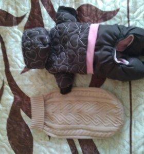 Комбинезон и свитер для маленькой собаки.