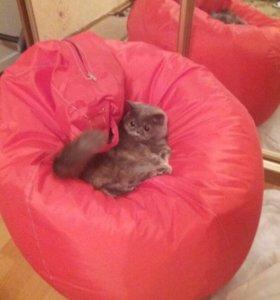 Бескаркасное новое кресло