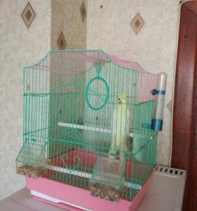 Клетка для птицы/попугая
