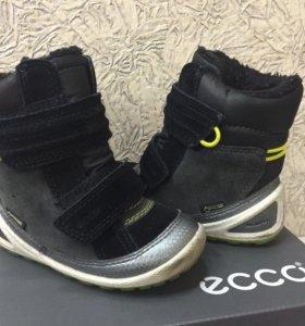 Ботиночки  ECCO 22 р-р