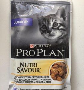 Влажный корм для котят Purina ProPlan Junior