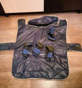 Куртка и ботинки для АСТ и подобных пород