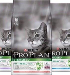 Корм для кошек Proplan 3кг