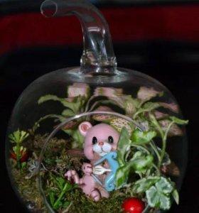 Флорариум в вазе-яблоко