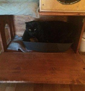тумба для кошачьего лотка