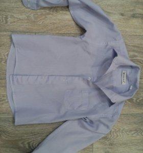 Две рубашки 4-5 лет