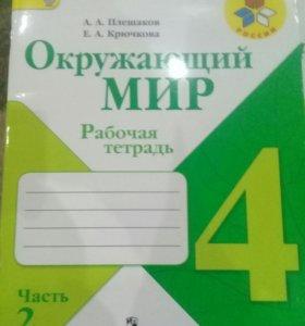 Рабочая тетрадь Окружающий 4 класс