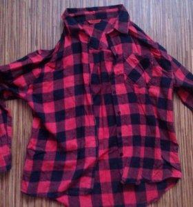 Рубашка в клетку Terranova