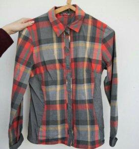 Рубашка WIBs новая