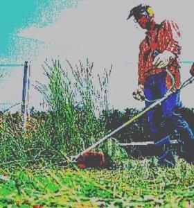 покос и расчистка участка от травы
