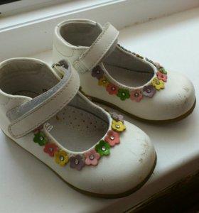 Туфли Barkito