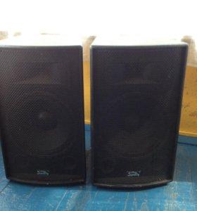 Двух полосная акустическая система