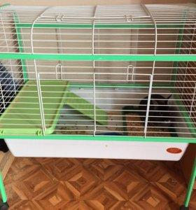 Кролик с клеткой.
