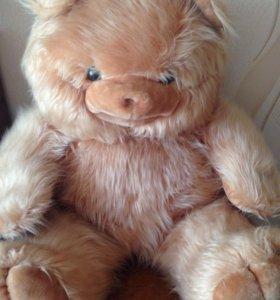 Продам медведя.