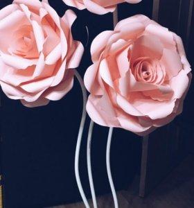 бумажные цветы, ростовые цветы