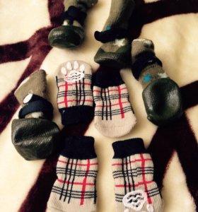 Носочки (для маленьких собачек.. + сапожки новые
