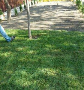 Рулонный газон. Распродажа.