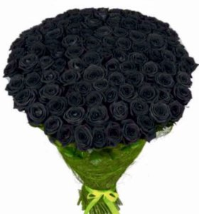 Чёрные розы
