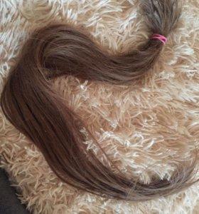 русые волосы натуральные 60 см