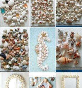 Морское богатство для удивительных идей