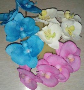Орхидеи на шпильках!!!!