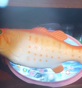 Поющая рыба