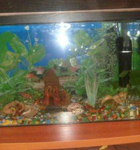Продаю аквариум сто литров