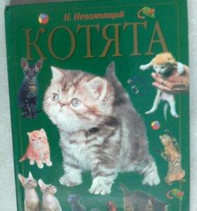 Книга Котята