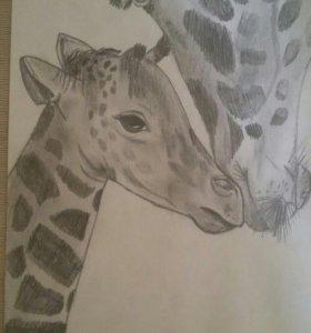 Рисунки животных 2