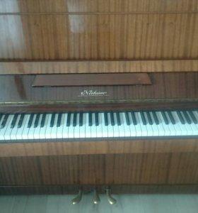 Фортепиано Нактюрн