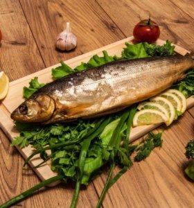Рыбка и сыр