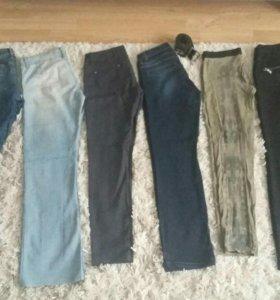 Брюки,джинсы 8 шт.