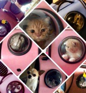 Рюкзак переноска для животного, кошек,мелких собак
