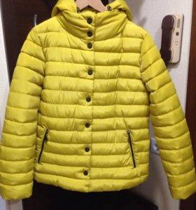 Куртка новая ( холодная осень)