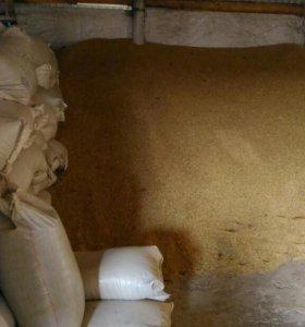 Пшеница, ячмень, отруби